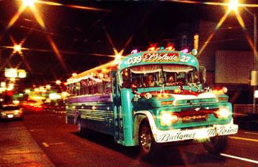 The Mexican Bus