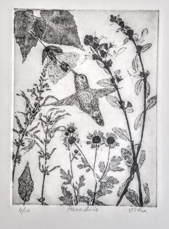 Hummingbird flying among flowers
